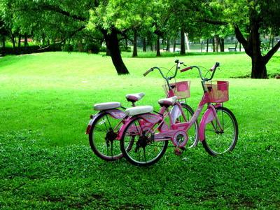 เขตสวนสาธารณะ จักรยาน
