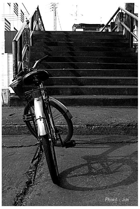 แสง เงา สะพาน และจักรยาน