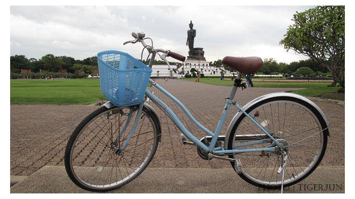 bikebuddamontol