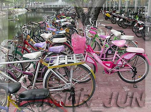 bikekaset04.jpg