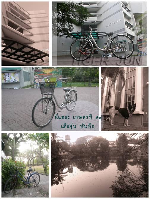 จักรยานเกษตร