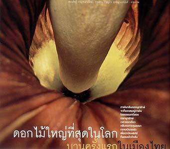 http://www.sarakadee.com/feature/2003/07/images/titan_arum_01.jpg