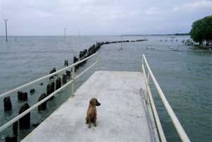 วัดขุนสมุทรทราวาส