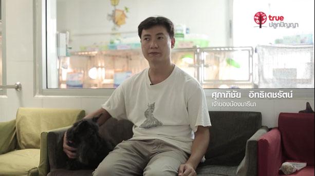 สารคดี The Moving Pictures – คลินิกพิเศษสัตว์เลี้ยง เยียวยาโรคสัตว์ด้วยความรักเฉพาะทาง