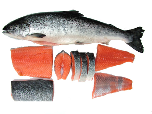 picture_of_salmon_showing_whole_fish_loin_fillets_steaks_and_tail_fillet