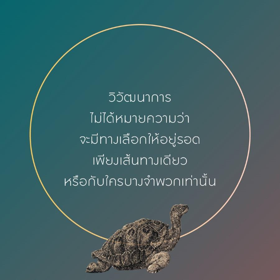 darwin 13