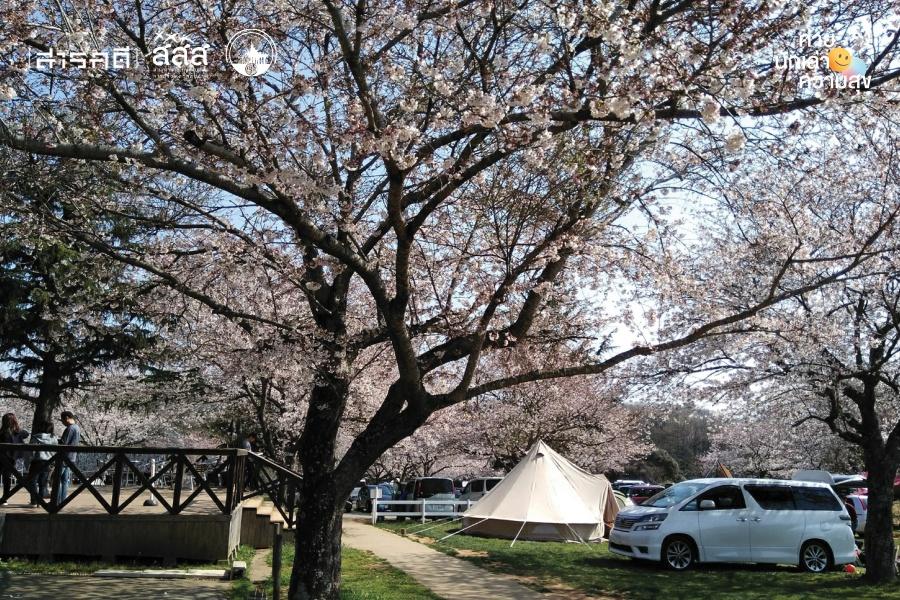 งานพาร์ตไทม์ในญี่ปุ่น เรื่องเล่าผ่านสี่ฤดูกาล