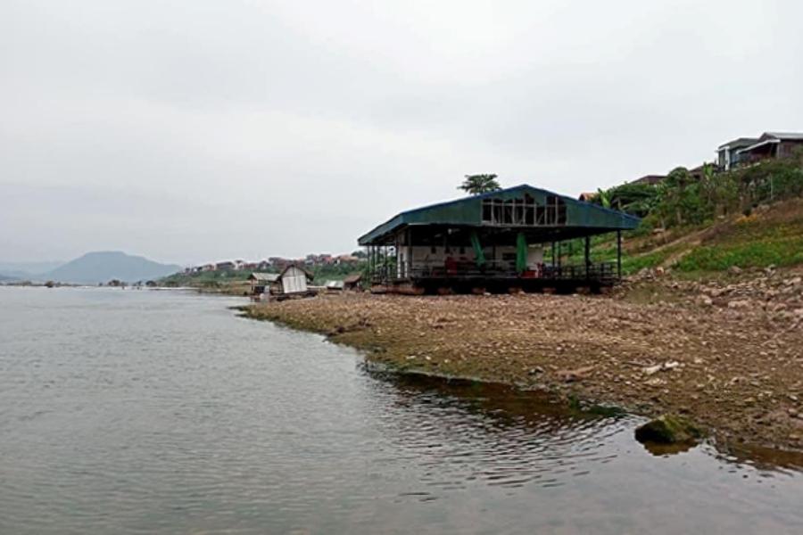 jinghong03