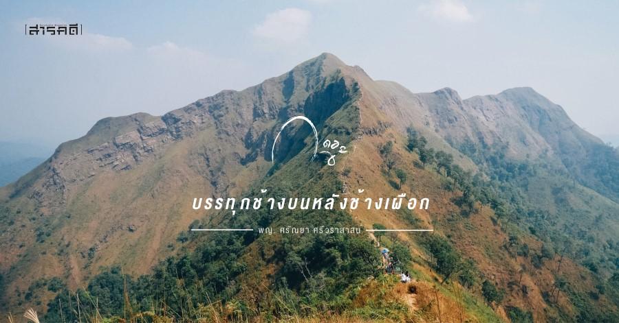 khaochangpuak01