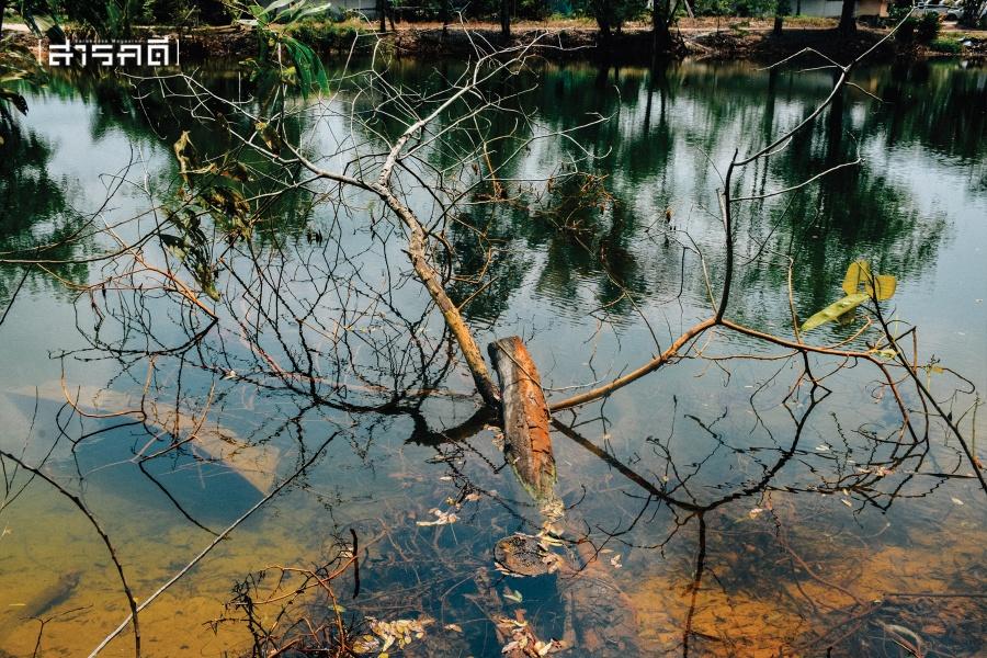 น้ำสีทองหนองพะวา ความคืบหน้ามลพิษปนเปื้อนนานกว่า 10 ปี