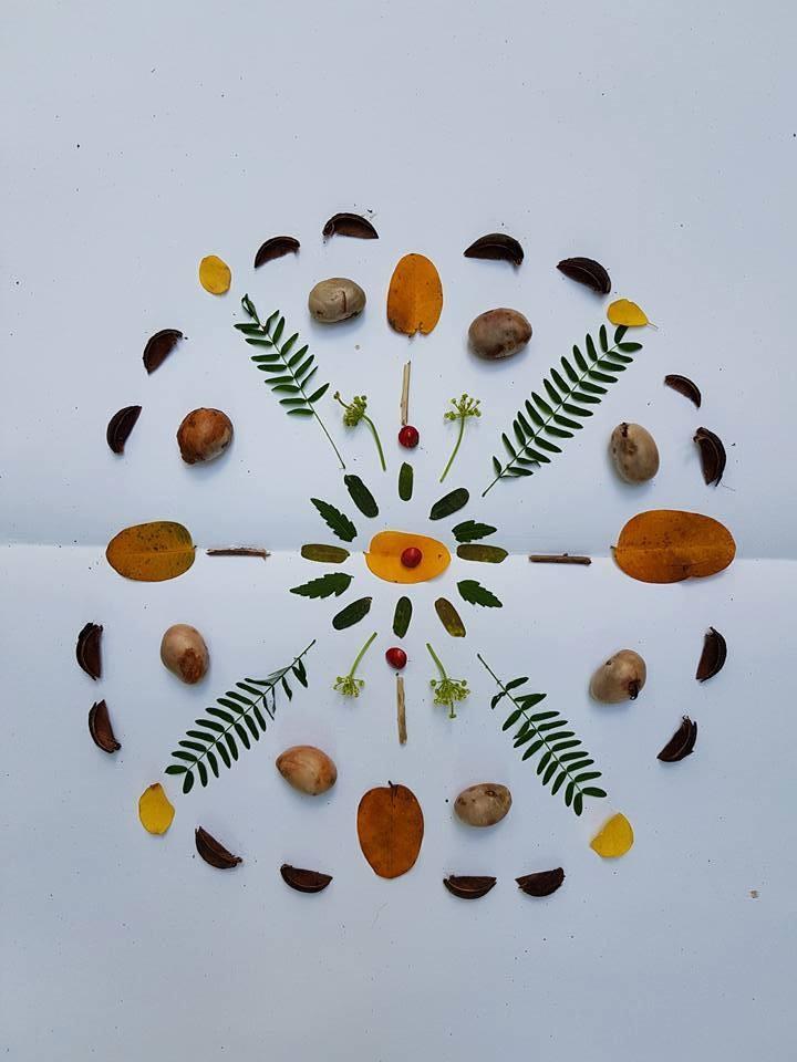 ชวนทำ Nature Mandala ศิลปะที่พาเราย้อนกลับมาดูธรรมชาติในตัว