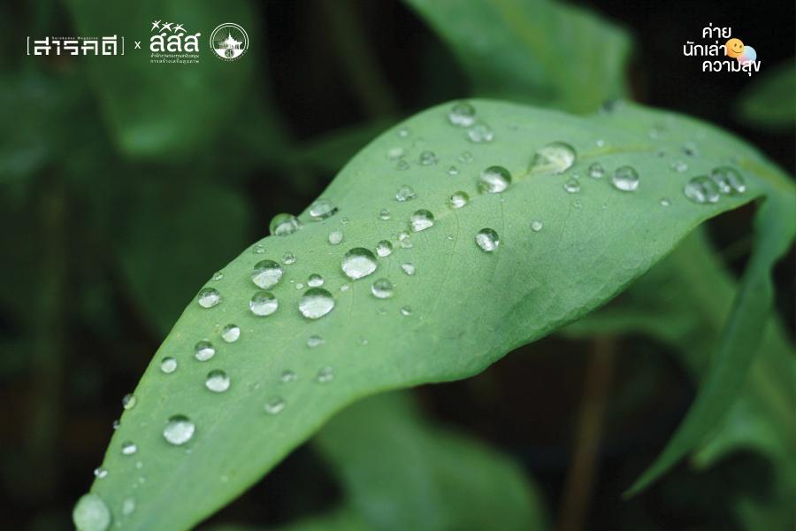 raining06
