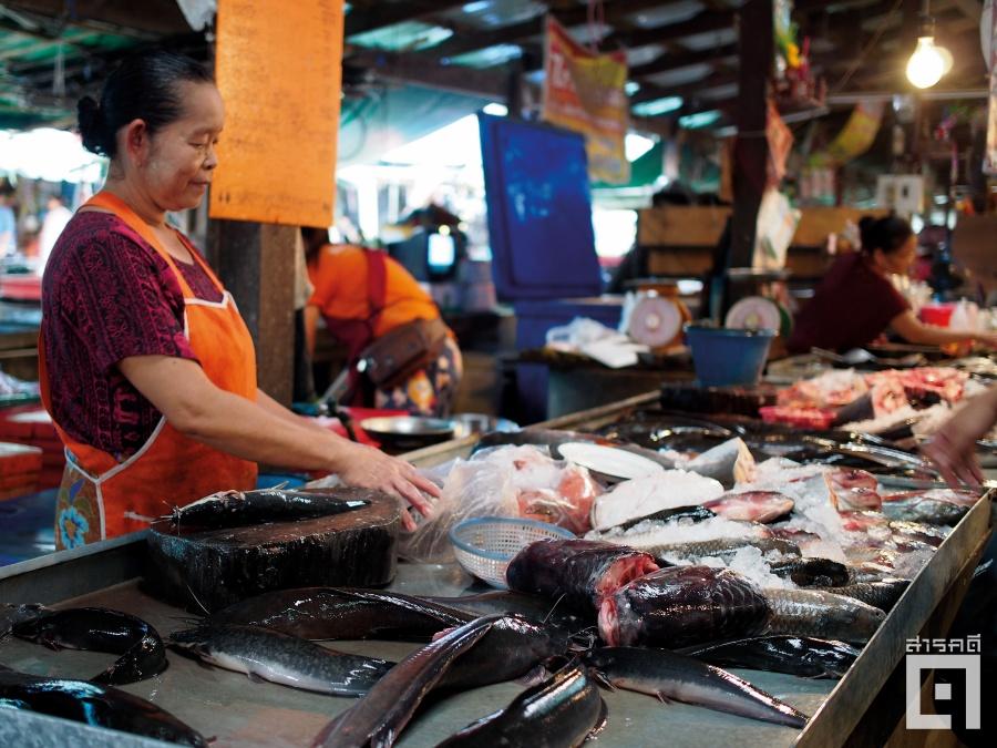 redwaterfish07