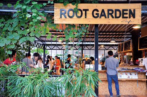 rootgarden01