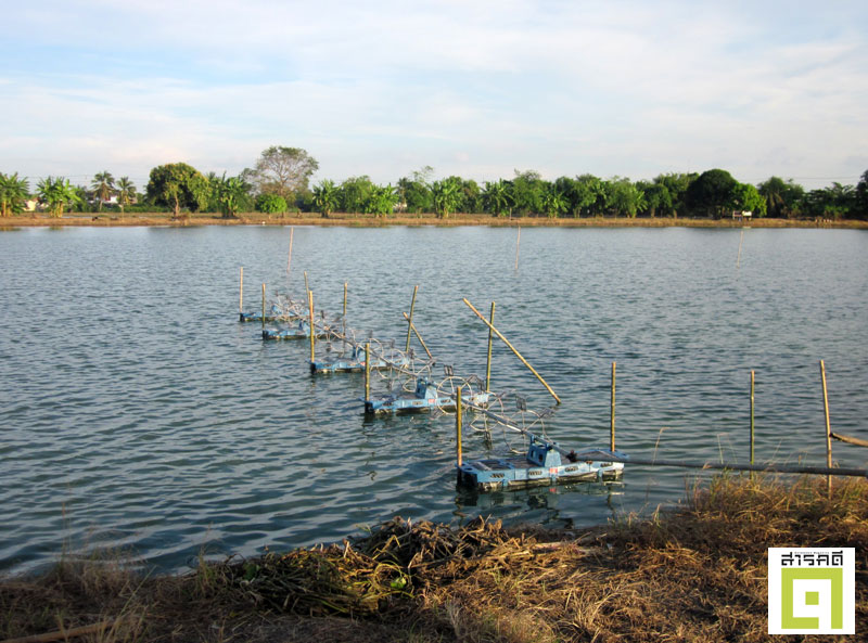 watertax02